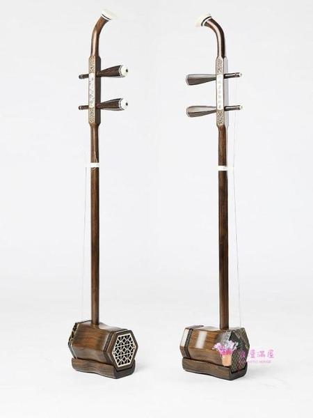 二胡 二胡樂器初學入門黑黃檀木紅木考級大音量吳越牌胡琴 教程8件配件T