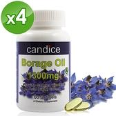 【Candice】康迪斯天然琉璃苣油膠囊(60顆*4瓶) 頂級冷壓琉璃苣油,比月見草油更好的選擇