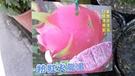 水果苗 ** 粉紅火龍果 ** 4.5吋盆/高15-25cm/新品種【花花世界玫瑰園】R