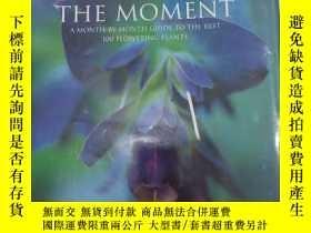 二手書博民逛書店Flower罕見of the moment(a montu-by-month guide to the best