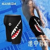 泳褲男潮五分寬鬆大碼時尚款男士泳衣專業速乾游泳褲成人溫泉裝備 創想數位