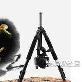 三腳架6663A三腳架鎂鋁合金單反數碼相機支架便攜旅游腳架三角架wy