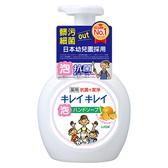 獅王趣淨洗手慕斯-清爽柑橘250ml【愛買】