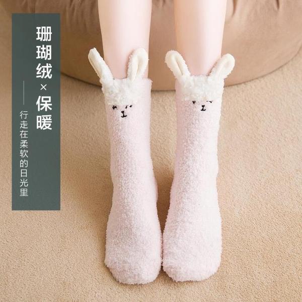 2雙 聖誕毛絨睡覺襪子女保暖加厚加絨毛巾襪珊瑚絨睡眠地板襪【聚寶屋】