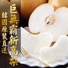 【愛上新鮮】韓國直送巨無霸新高梨 4顆裝(850g±10%/顆)