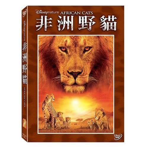 非洲野貓DVD (購潮8)
