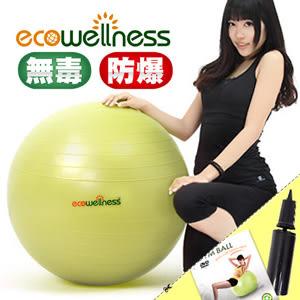 瑜珈球│【ecowellness】加厚防爆26吋韻律球(附打氣筒)65cm彈力球抗力球復健大球專賣店