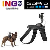 【24期0利率】GOPRO 寵物頸帶 ADOGM-001  Dog Harness 寵物綁帶  公司貨