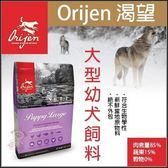 *KING WANG*Orijen渴望 大型幼犬6公斤