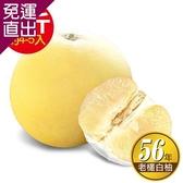 ㊣台南林家 56年在地老欉大白柚-特A級!直送1箱 10台斤/箱 4-5顆【免運直出】
