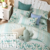 鴻宇 單人薄被套 夢時尚綠 防蟎抗菌 美國棉授權品牌 台灣製2121