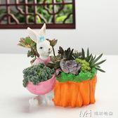 多肉動物花盆創意綠植組合盆栽可愛動物樹脂花盆多肉植物花盆        瑪奇哈朵
