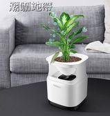 植物空氣凈化器迷你桌面小型家用空氣清淨機