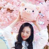 可愛粉色豬毛絨玩具抱枕小號豬冬季暖手可插手公仔布娃娃女生禮物