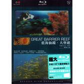 藍海仙蹤 大堡礁 藍光BD  (音樂影片購)