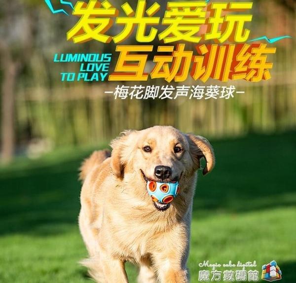 狗狗玩具耐咬幼犬磨牙發聲玩具球泰迪小狗金毛大型犬寵物解悶神器 魔方數碼館
