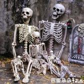 萬聖節裝飾品恐怖掛件仿真人體骨骼模型骷髏骨架酒吧鬼屋道具擺件『快速出貨』