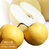 【鮮食優多】綠安嚴選豐水梨6粒x2盒(470g±10%粒)