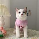 韓版IG寵物貓貓狗狗衣服冬裝保暖小奶貓矮腳貓咪可愛毛衣背心【小狮子】
