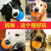 宜特狗狗玩具球發聲大型犬金毛泰迪狗咬球耐咬磨牙訓練球寵物用品   麥琪精品屋