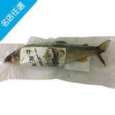 【宜蘭】養殖帶卵母香魚(200g/尾/包)