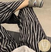 斑馬紋拖地褲女高腰垂感開叉闊腿褲休閒運動長褲【毒家貨源】