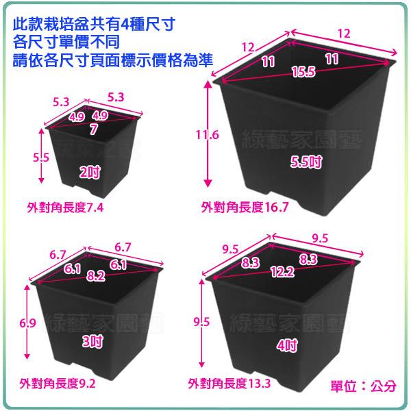【綠藝家005-D114-BL-2】四方型栽培盆5.5吋-黑色(厚)150個/件