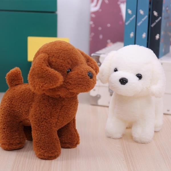 毛絨玩具狗 狗狗白色可愛泰迪狗小狗娃娃公仔玩偶六一兒童節禮物·享家