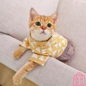 貓咪衣服防掉毛寵物四腳衣服薄款【匯美優品】