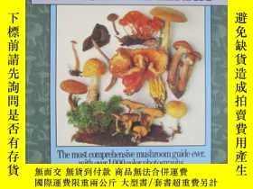 二手書博民逛書店Mushrooms罕見of North America(英語原版 平裝本)北美蘑菇Y15470 Roger P