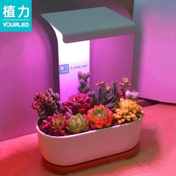 植物補光燈 植力【桌面補光燈】多肉植物led全光譜上色USB家用室內生石花肉錐 裝飾界 免運