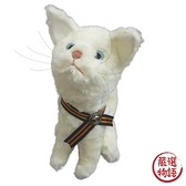 【日本製】【MONSEUIL】絨毛布偶玩具 貓咪Joule 白色 SD-9043 - MONSEUIL 日本製