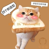 通用伊麗莎白圈吐司面包頭套防舔項圈貓飾品【宅貓醬】