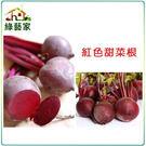 【綠藝家】C09.紅色甜菜根種子100顆...