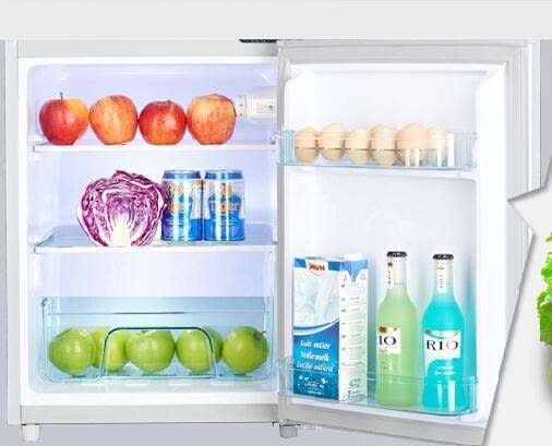 220V  60L小冰箱小型迷你家用單門車載冷凍冷藏節能宿舍雙開雙門電冰箱igo   琉璃美衣