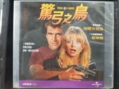 挖寶二手片-V03-050-正版VCD-電影【驚弓之鳥】-梅爾吉勃遜 歌蒂韓(直購價)