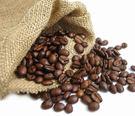 半磅咖啡豆(限購一包)