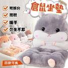 超萌倉鼠坐墊【HNB7C1】日系毛絨懶人椅墊靠墊分離抱枕毯保暖手動物可愛聖誕交換禮物#捕夢網