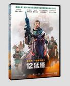 12猛漢 DVD (OS小舖)