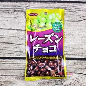 日本零食糖果正榮_葡萄乾巧克力53g【0216零食團購】4901638711237