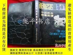 二手書博民逛書店罕見中國昆蟲病毒圖譜(16開精裝)Y21959 武漢大學病毒研究
