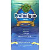 HUA  富藻康膠囊60顆裝【德芳保健藥妝】束絲藻 褐藻醣膠 藍藻 綠藻 藻寡醣