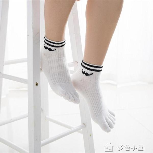 五指襪3雙裝情侶純棉五指襪時尚純色數字胡子男女全棉舒適分腳趾襪