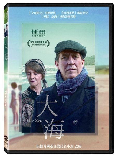大海 DVD (購潮8)
