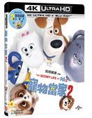 【停看聽音響唱片】【BD】寵物當家2 雙碟限量版『4K』