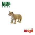 《MOJO FUN動物模型》動物星球頻道獨家授權 -小獅子(站姿)