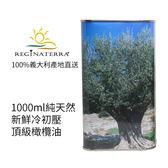 義大利王后之地REGINATERRA產地新鮮橄欖油 1000ml/桶