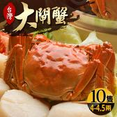 台灣珍稀大閘蟹*10隻組-死蟹包退(4-4.5兩/隻)(食肉鮮生)