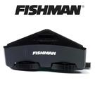 ☆唐尼樂器︵☆免運費 Fishman S...
