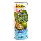 小美冰團 椰子水風味飲料 500ml